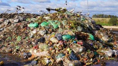 Отсортированные биоотходы под открытым небом, в ожидании компостирования.