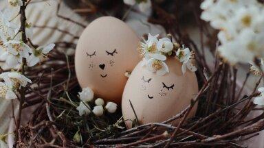Украшаем пасхальные яйца: 6 необычных идей