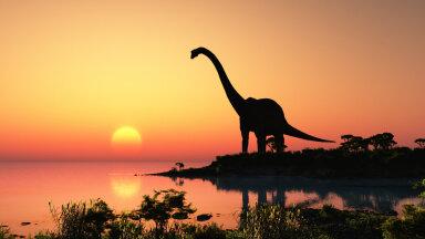 Dinosauruste väljasuremine algas juba enne asteroidi tabamust
