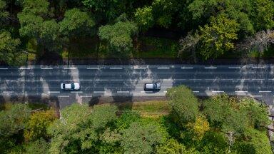 Autotee ja mets