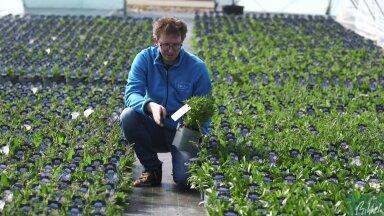 VIDEOKOOLITUS   Millised on selle kevade uued tulijad taimemaailmas?