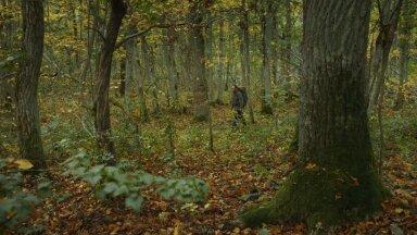 """Tehes dokumentaalfilmi """"Pingeväljade aednik"""", kõndis Joosep Matjus koos Mehis Heinsaarega mööda kirjaniku inspiratsiooni radasid, mis on enamasti enesega üksi olemise käigud."""