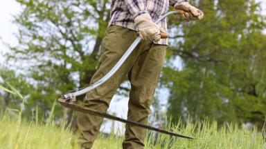 Mari Kaisel: Miks tasub õppida käsitsi niitma?