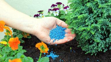 Suurimad vead, mida taimedele kevadväetamist tehes vältida tasuks