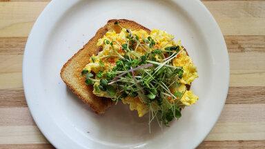 MUNAVÕI — tänase päeva toit! Ideed ja soovitused, kuidas seda valmistada ja millega serveerida