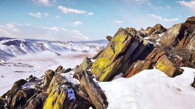 Ученые оживили червей после 24 тысяч лет в вечной мерзлоте в Сибири