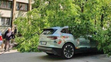 ФОТО | В Риге на официальный автомобиль чемпионата мира упало дерево