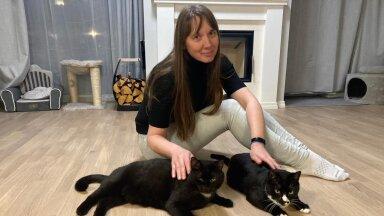 Sille Laks oma kallite kassidega, kes mõlemad jõudsid tema juurde koju varjupaigast.