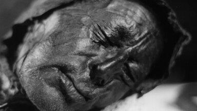 Tollundi mees (foto: Wikimedia Commons / Sven Rosborn)