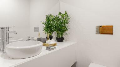 Millised toataimed sobivad kasvama niiskesse ja hämarasse vannituppa?