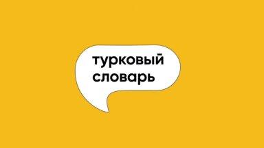 """Когда нужно говорить """"Одеть"""", а когда """"Надеть""""? Отвечает журналист Ксения Туркова"""