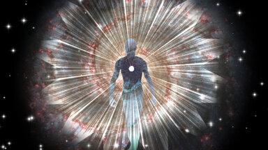 Inimese tundlikkus Maa magnetväljale leidis kinnitust