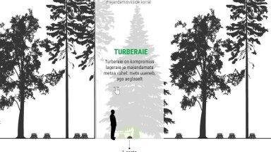 INTERAKTIIVNE GRAAFIK   Vaata, kuidas noor mets pärast erinevaid raieid kasvab!