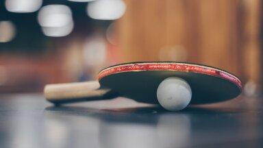 Гадание по настольному теннису: блогер RusDelfi придумала оригинальный способ предсказать победу России над Бельгией