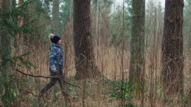VIDEO | Metsaomanik: küpse metsa uuendamiseks mets raiutakse