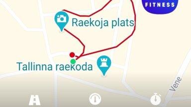 ÄRA NII TEE: Tiina Jõgeda püüdis Ever Giveni kunsti Tallinna vanalinnas jalutades järele aimata. Sina suudad paremini!