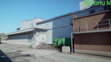 Juba 135. aastat tegutsev Tartu Mill kasutab eestimaist toorainet