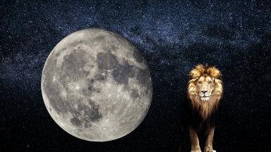 Hindu astroloogia   Täiskuu Lõvi sodiaagimärgis aitab leida küllust ja õnne
