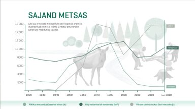 Eesti on metsade maa