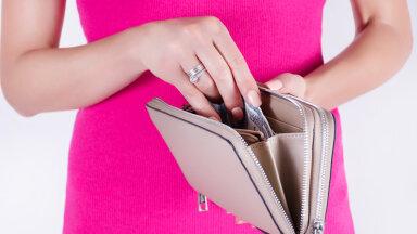 Kas sinu rahakotti kahandavad nõrkused või teadmatus? Vaata järele!