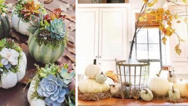 15 ideed, kuidas sügisandidega kodu ja aeda kaunistada