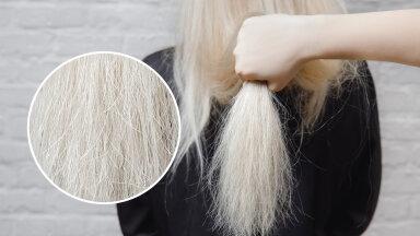 Sa ei kujuta seda ette, su juuksed ongi kevadeti tuhmimad ja kahusemad. Miks ja mida teha?