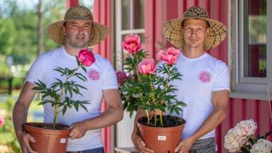 Rain Arro ja Marko Toomere on otsustanud anda panuse Eesti pojengikasvatuse arendamisse.