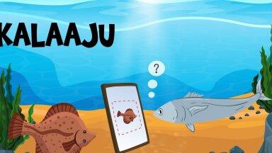 Nutikas veebirakendus aitab kalu määrata
