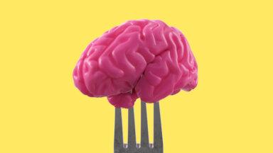Kuidas vähema ajaga rohkem tehtud saada? Need toidud panevad aju tööle!