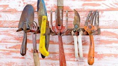 Kõik tööriistad siin pildil vajaksid roostest puhastamist.