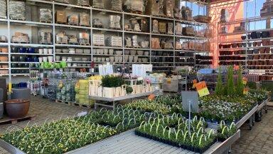 Koduremontija kogemus — kui lihtne on piirangute ajal erinevates ehituspoodides ostlemine?
