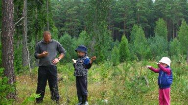 ASi Timber metsaspetsialist Kristo Kütt koos oma lastega metsas. Taamal näha pea kogu metsa eluring – lageraielank, noor kultuur, noorendik, keskealine ja küps mets.