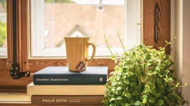 Раскрыты способы создать комфортный микроклимат в квартире