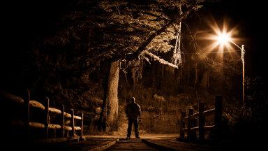 Kristiina lugu: miks üks mees üle tänava kogu aeg meie akendesse vahib?