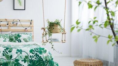 Интерьер Interjöör Shutterstock