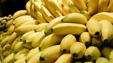 VIDEO | Uskumatu, mida kõike banaaniga lisaks lihtsalt ärasöömisele teha saab!