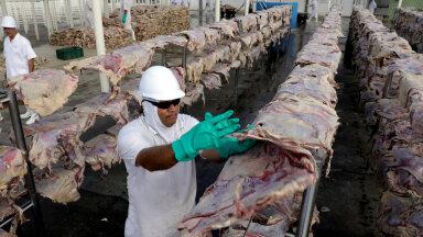 KÜBERRÜNDE OHVER: JBS on maailma suurim veiseliha töötleja. Foto ettevõtte tehasest Santana de Parnaiba linnas Brasiilias.