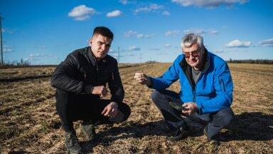 Siim ja Romet Rässa tritikupõllul, mida talv kahjustas kõige rohkem. Viljakasvatajad uurivad taimejuuri, et otsustada, kas põld läheb ümberkülvamisele.