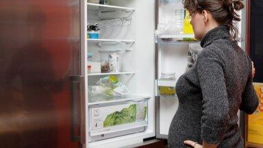 Külmkapp. Foto on illustratiivne