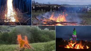 LUGEJATE FOTOD | Jüriöö märgutuled üle Eesti - uudistamas käisid isegi lehmad