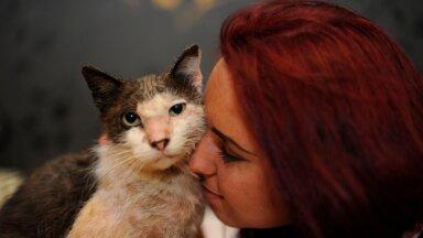 Laura on kodutute loomadega tegelenud juba 5 aastat.