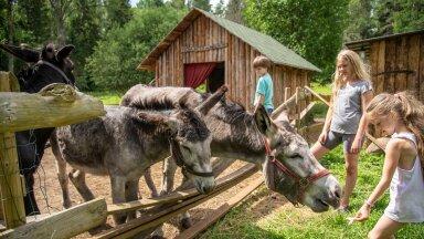 Otepää aasta ema ja mullune aasta isa näitavad oma muinasjutulist talu