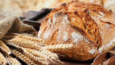 Rahvakalendri järgi on täna rukkimaarjapäev ehk suur leiva püha