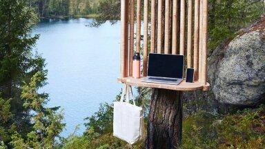 """""""Захотел совместить полезное с приятным — взял ноутбук и отправился в лес"""": в Финляндии появились необычные пункты для удаленной работы"""