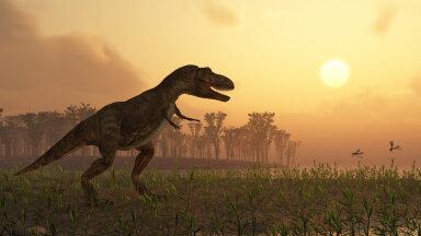 Uuring: maailmas on elanud 2,5 miljardit türannosaurust