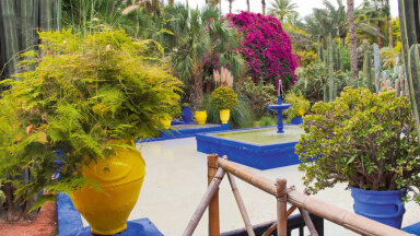 Jacques Majorelle'i aed.