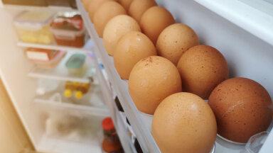 Ekspert selgitab: miks ei tohi mune säilitada külmkapi ukse sees oleval riiulil