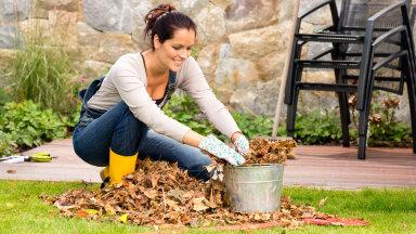 Lehtede koristamine ei pruugigi olla kõige olulisem sügistöö.