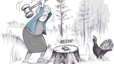 Kuidas südikas proua petisest metsavahendaja 50 000-eurosest teenistusest ilma jättis