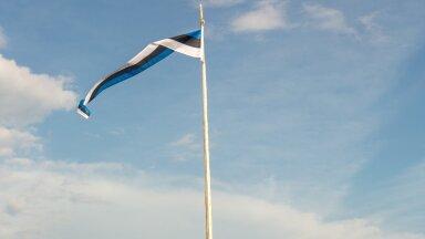 Kas teadsid, et lipumasti saab ise teha? Vaata põhjaliku õpetust!